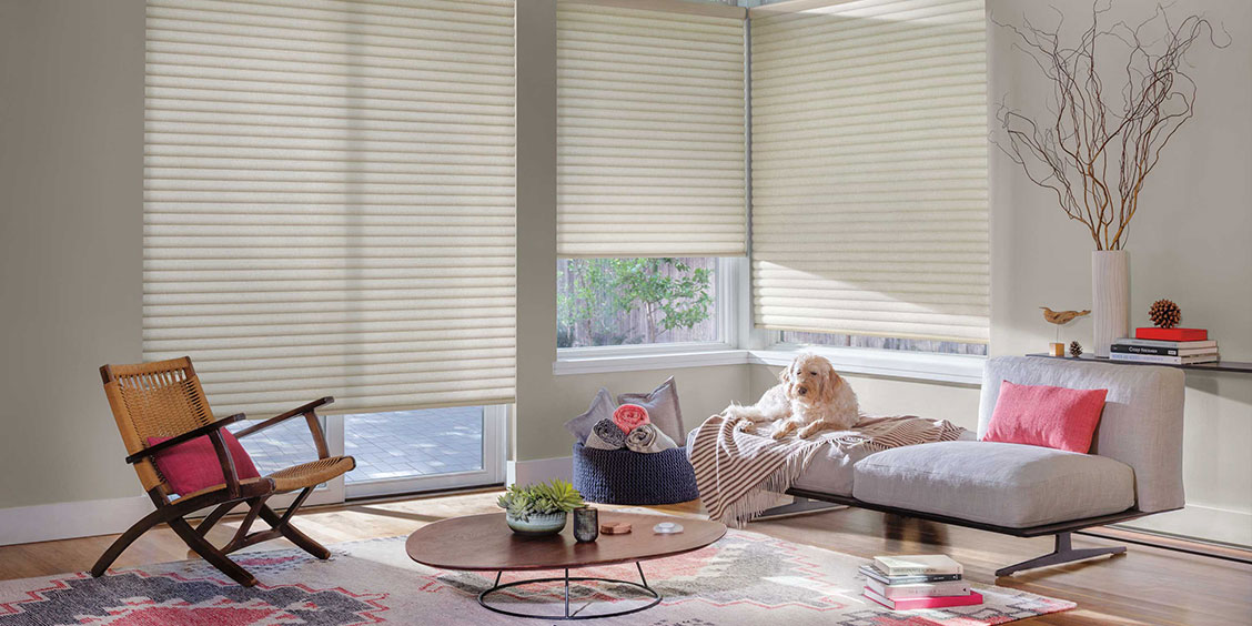 Sonnette Cellular Roller Shades - Hunter Douglas Gallery - Imagine More